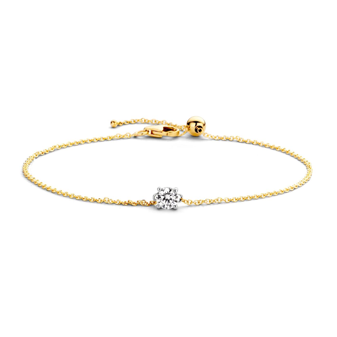Afbeelding van Blush 14 Karaat Gouden Armband 2166BZI (Lengte: 18.00 cm)