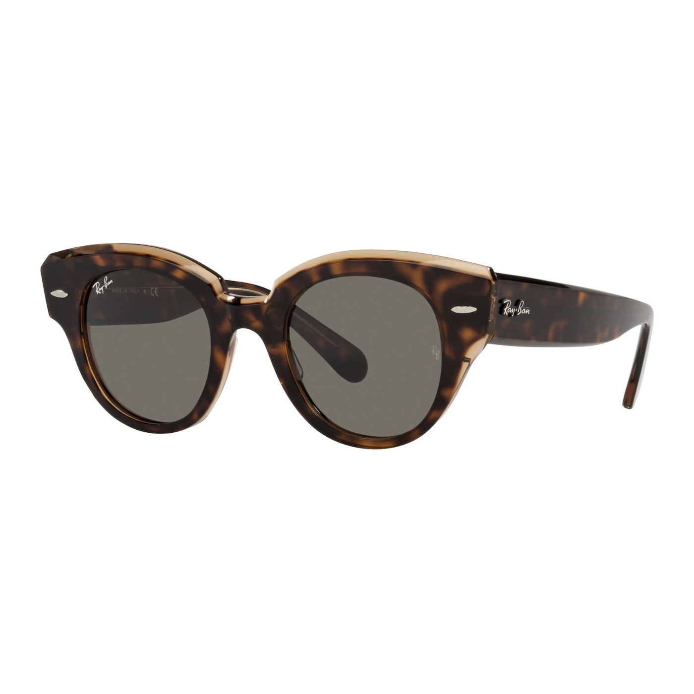Ray-Ban Havana Transparent Brown Zonnebril RB2192194765