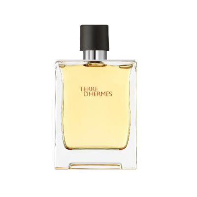 Hermes Terre D'Hermes Eau De Toilette Spray 100 ml
