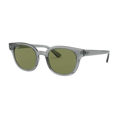 Ray-Ban Transparent Grey Zonnebril RB432464504E50