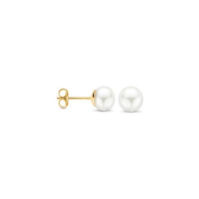 Blush 14 Karaat Gouden Oorbellen 7136YPW