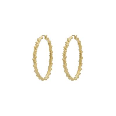 ANNA + NINA 925 Sterling Zilveren Essentials Cluster Hoop Goudkleurige Oorbellen 18-2M902015BGP