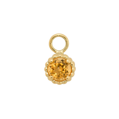 ANNA + NINA 14 Karaat Gouden Solid Gold Birthstone November Single Oorbedel 19-3M904011G