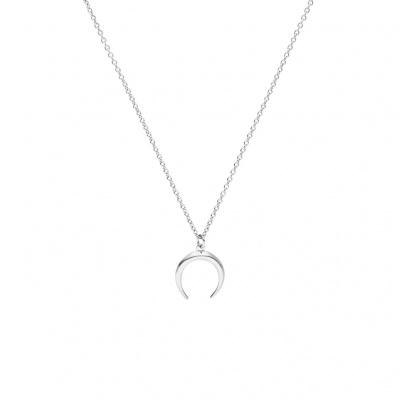 Paul Valentine Zilverkleurige Moon Ketting FY-IPS-2-006 (Lengte: 44.50 cm)