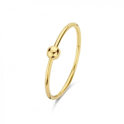 Isabel Bernard Belleville Odette 14 Karaat Gouden Ring IB330027