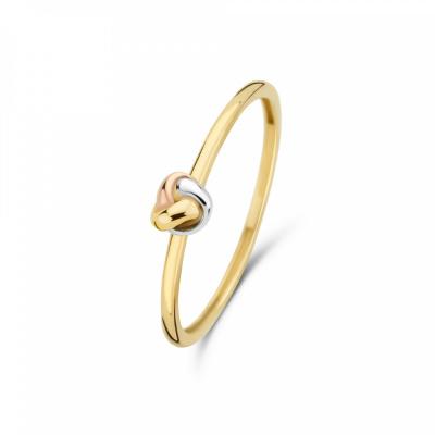 Isabel Bernard Tricolore Maeva 14 Karaat Gouden Ring Met Drie Kleuren Goud IB330038